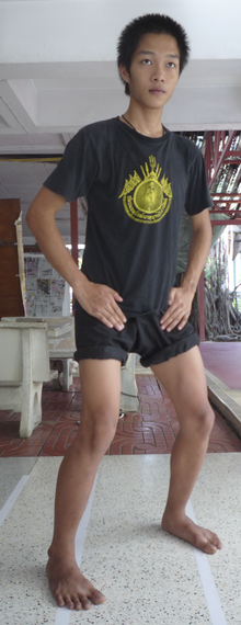 muay thai workout